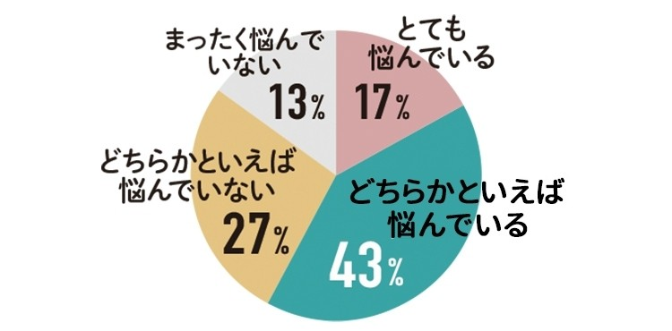 とても悩んでいる 17% どちらかといえば悩んでいる 43% とても悩んでいない 27% まったく悩んでいない 13%