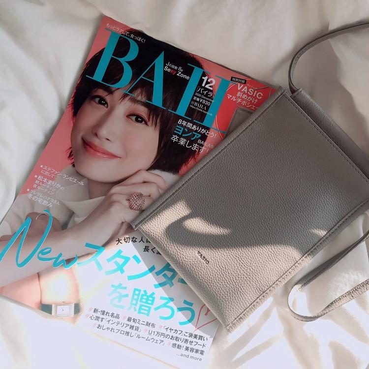 【VASIC】BAILA12月号の付録が可愛い♡_1