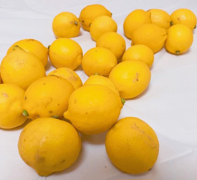 完全無農薬の皮まで食べれるレモンでビタミンを効率良く摂取_2