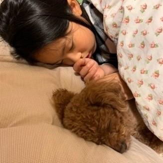 バイラ編集部Sの愛犬