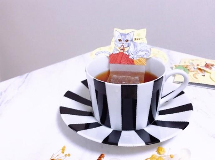 おうちで猫カフェ気分?!猫好きさん必見!可愛すぎるルイボス茶_2