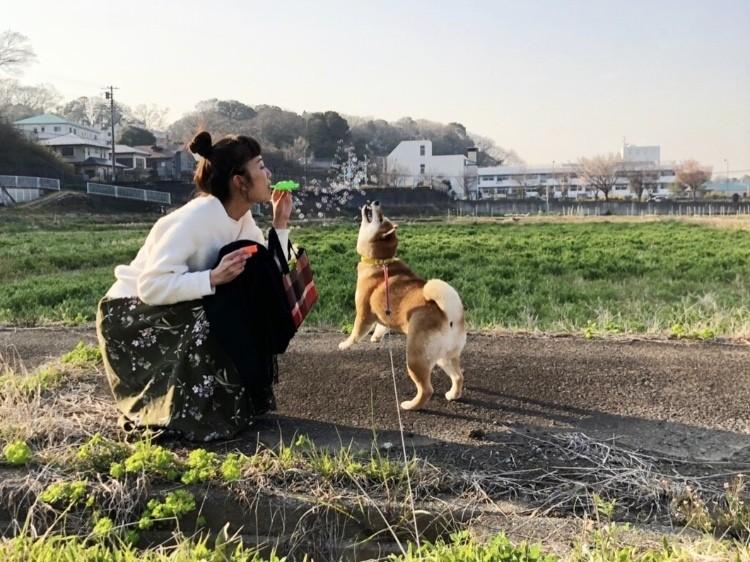 愛犬ナッツとお花見散歩♪_4
