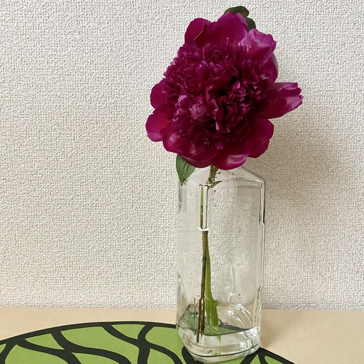 【エディターのおうち私物#24】生け花が意外とおしゃれに見える、空き瓶のリユース方法( #StayHomeWithFlowers )_3