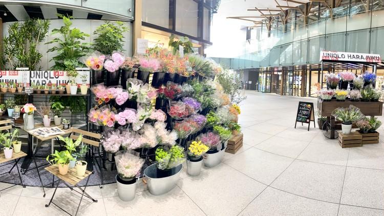 【エディターのおうち私物#36】1束¥390「ユニクロ(UNIQLO)」新オープンの原宿店やUNIQLO PARKで花やグリーンの販売をスタート!_1