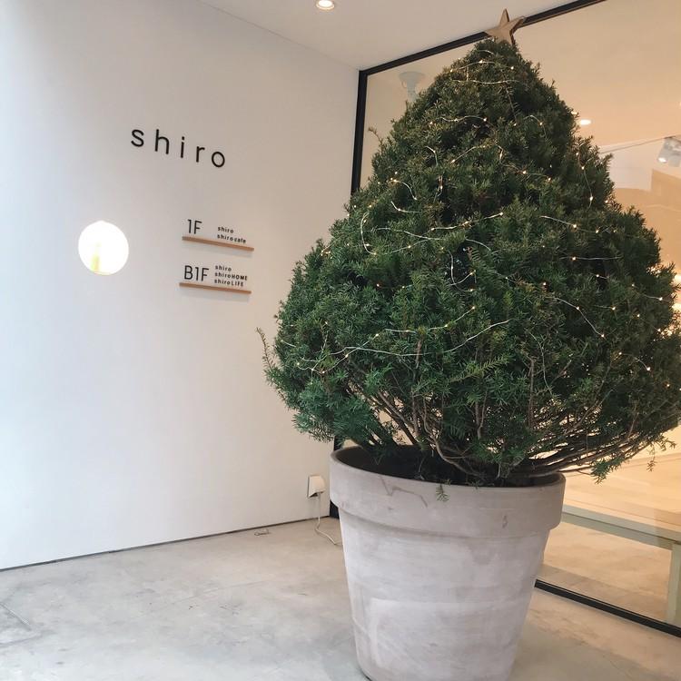 shiro cafe / コーデ&メイク_4