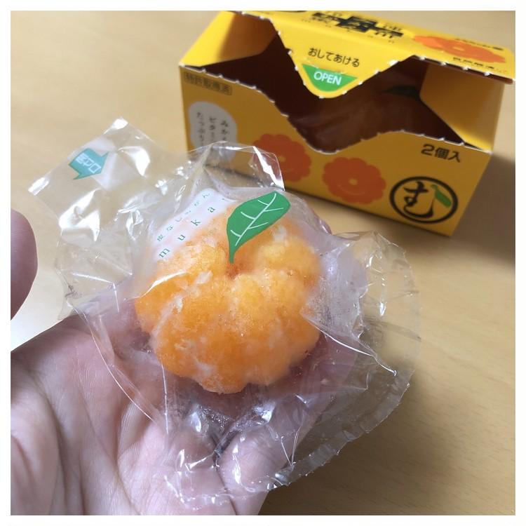 【コンビニアイス】ビタミンCも取れる♡昔懐かしの冷凍●●●?_2