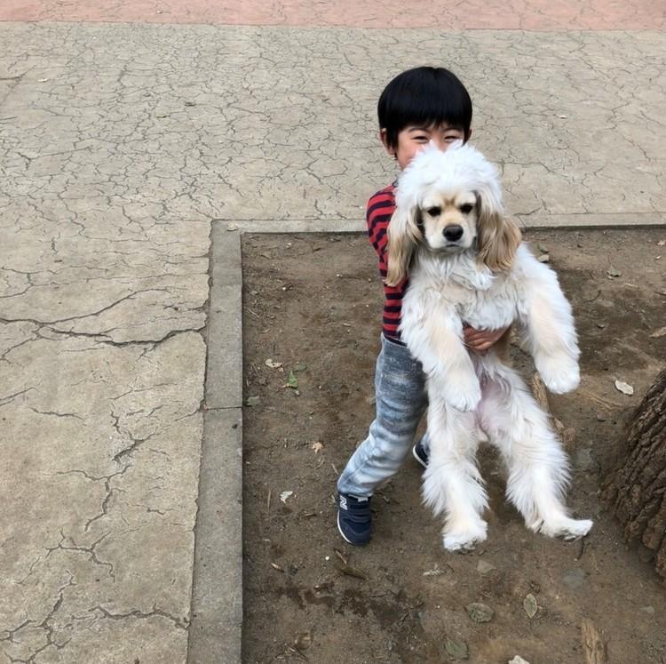 バイラ編集部ちゃんまいの愛犬