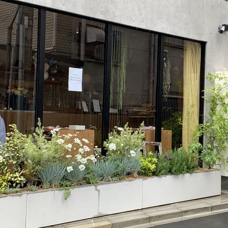 【千駄ヶ谷】癒しのフラワーカフェ_2