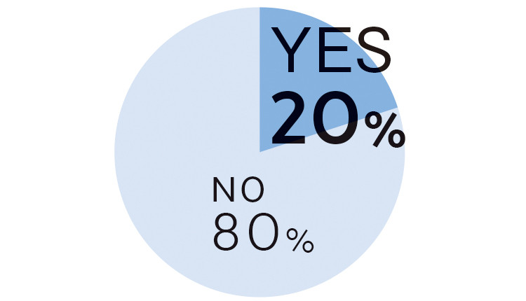 YES 20% NO 80%