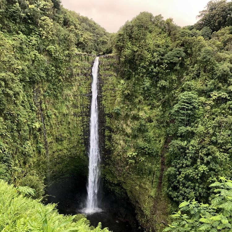 大自然の中で最高の星空が!【ハワイ島編②】_34
