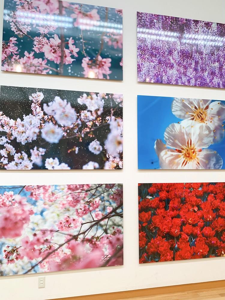 蜷川実花展に行ってきました!_6_1