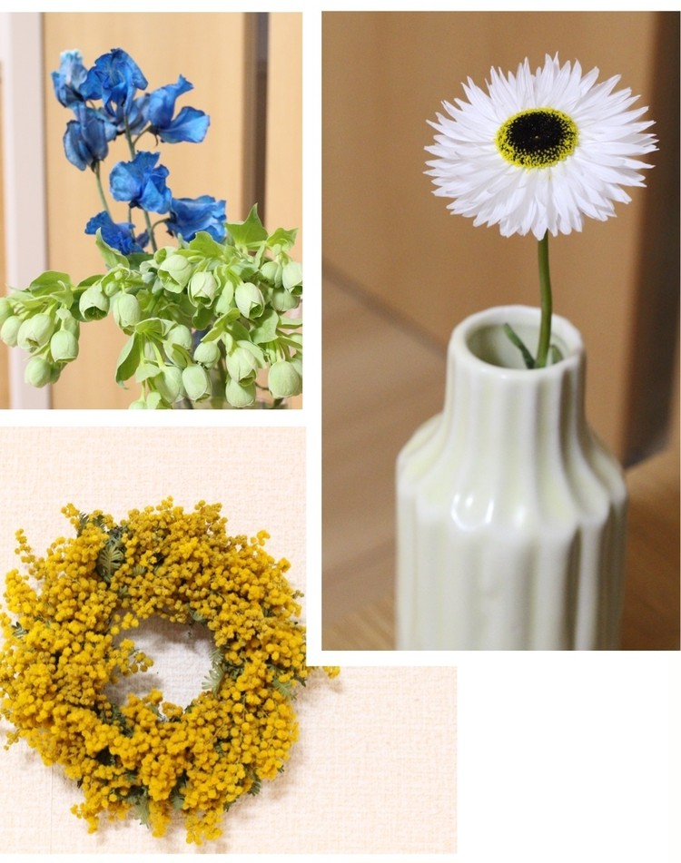 お花のパワーに癒されて。可愛い!がとまらない〈お花×焼菓子×カフェ〉のお店「cotito」_6