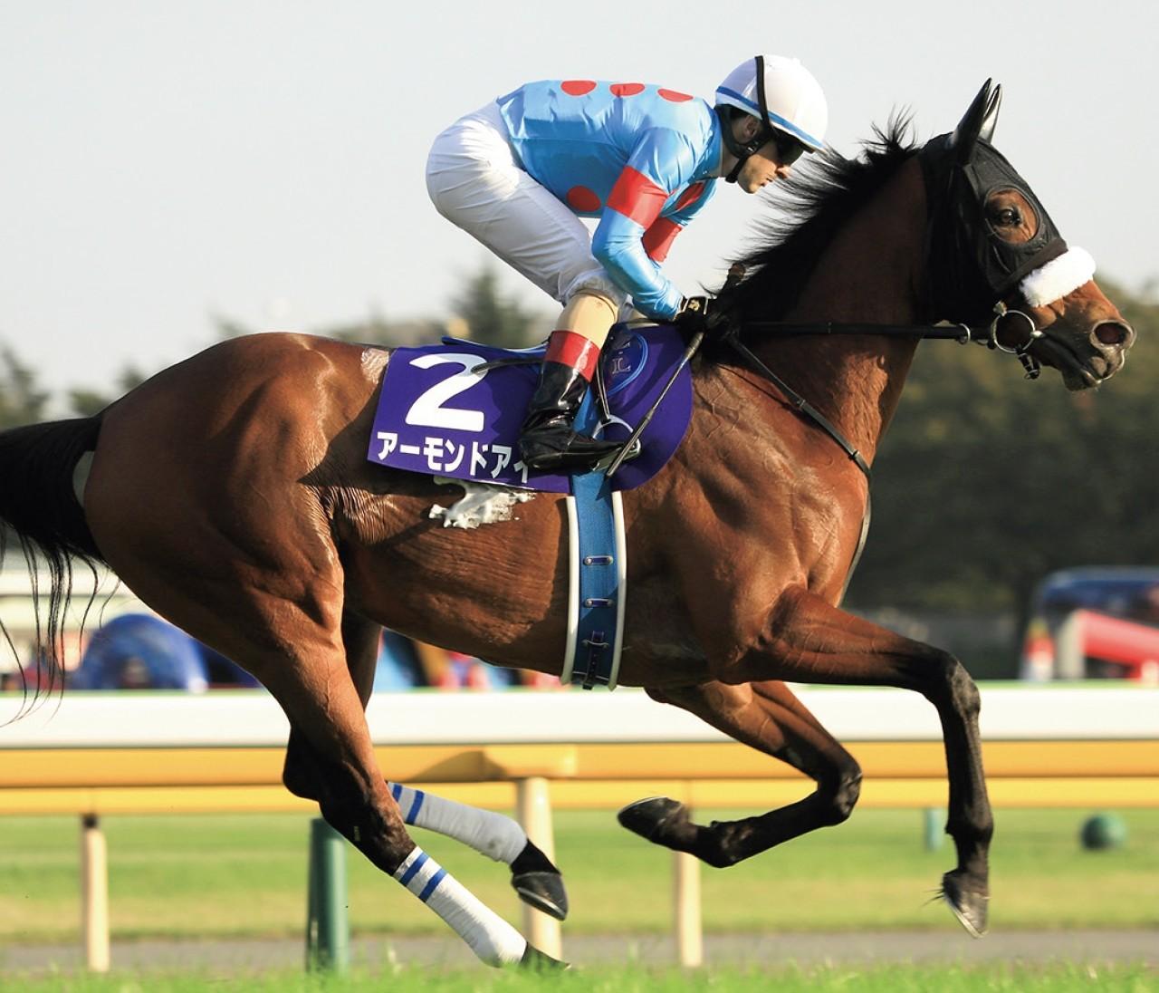かわいすぎる馬女(ウマジョ)♡ 横山ルリカが競馬に夢中になったワケ