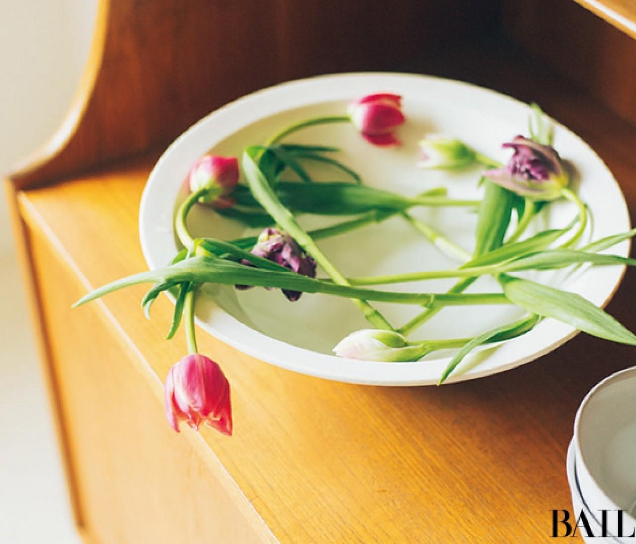 平皿にさりげなく。上から春を楽しむチューリップ【カトパンのあえて小さく飾る花レッスン】