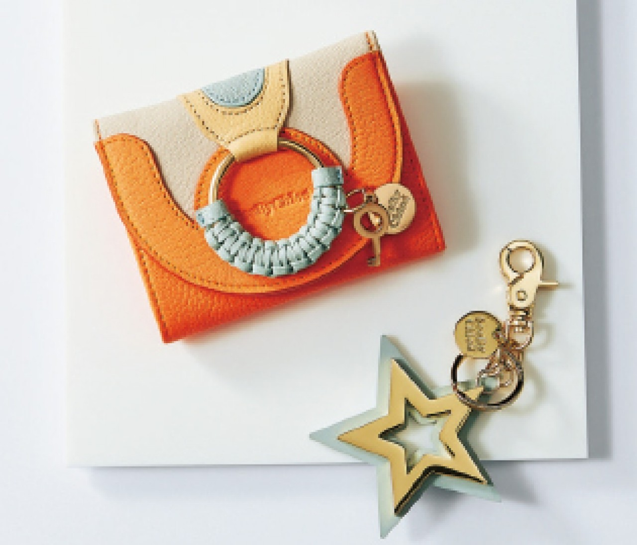 【SEE BY CHLOÉ】可愛く目立つデザインはバッグの中でもすぐ見つかる!スモールレザーグッズ⑪