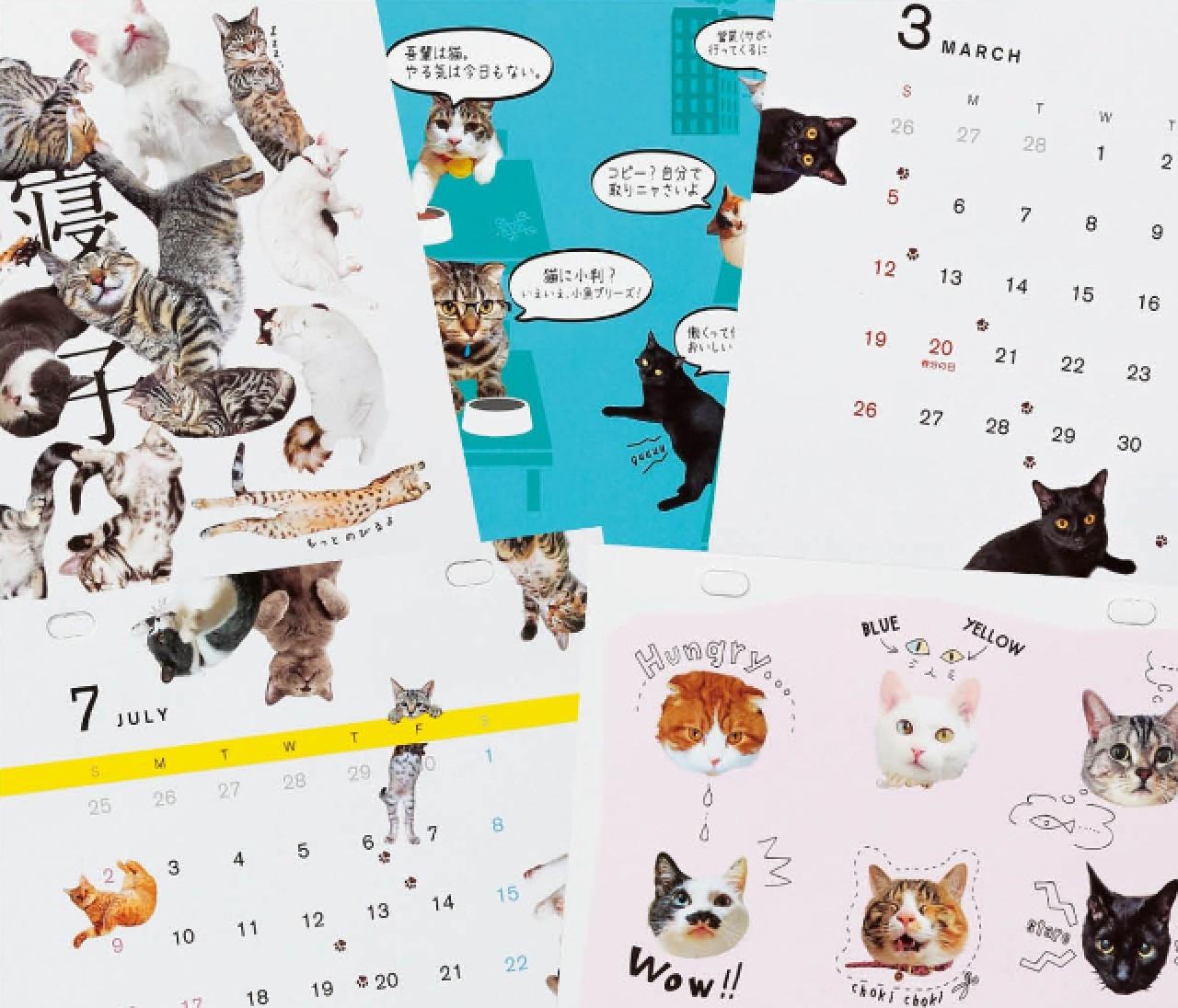 【1月号付録にゃんバカレンダー】編集やまみ&マフユの制作ウラ話
