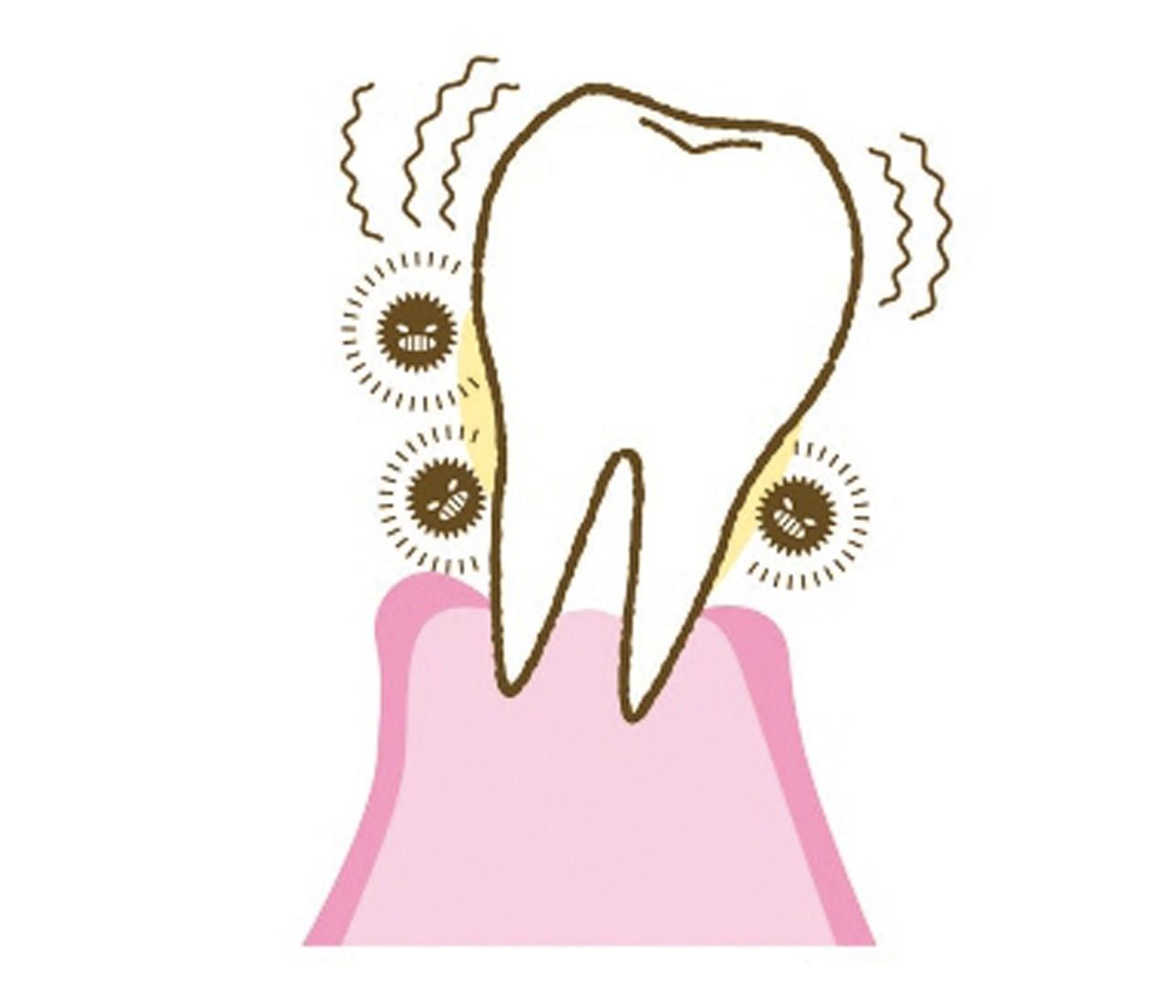 【本気のオーラルケア】歯周病&虫歯予防に! 毎食後に行いたい基本の3ケア