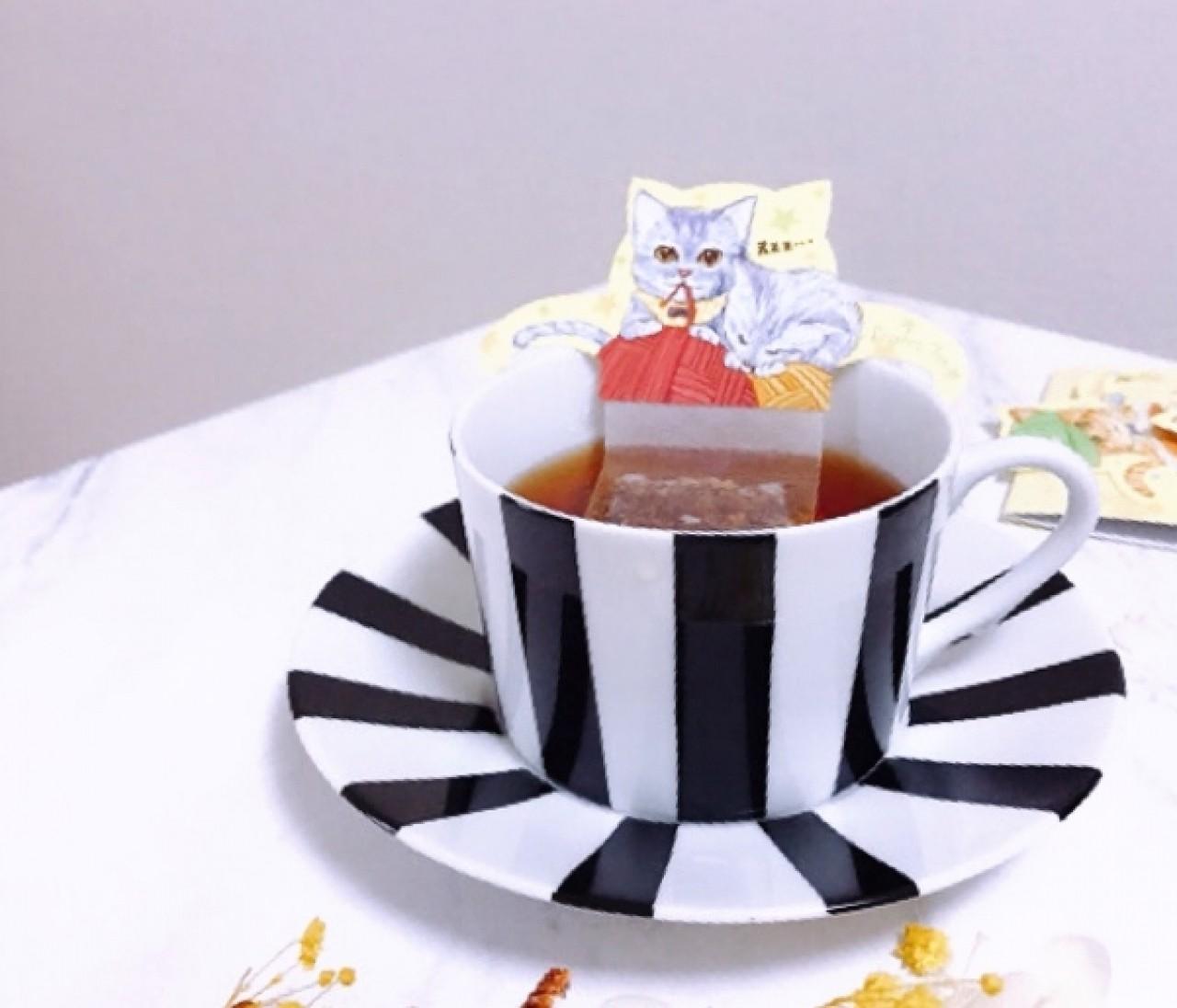おうちで猫カフェ気分?!猫好きさん必見!可愛すぎるルイボス茶