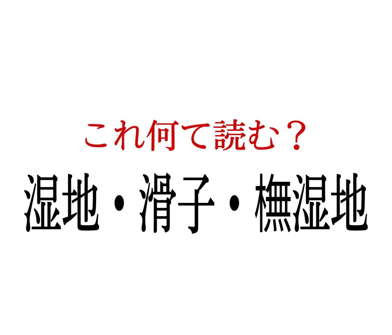 「湿地・滑子・撫湿地」:この漢字、自信を持って読めますか?【働く大人の漢字クイズvol.45】