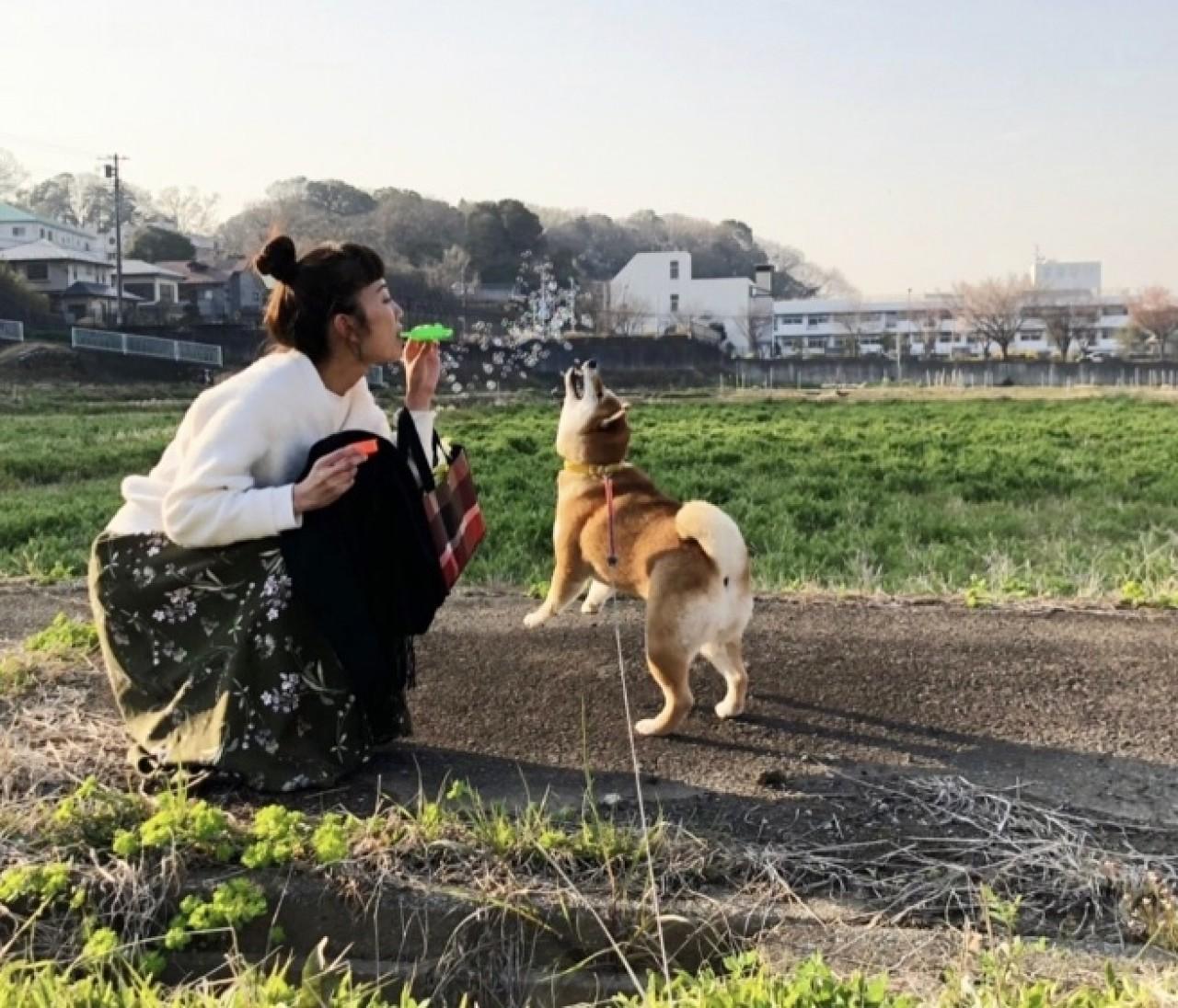 愛犬ナッツとお花見散歩♪
