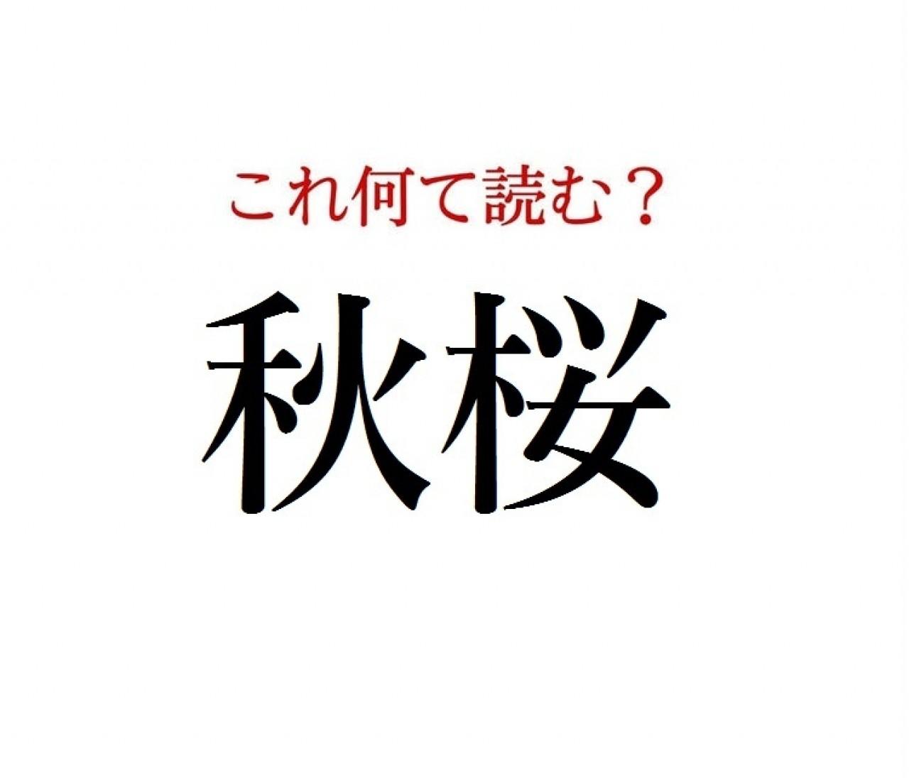 「秋桜」:この漢字、自信を持って読めますか?【働く大人の漢字クイズvol.302】