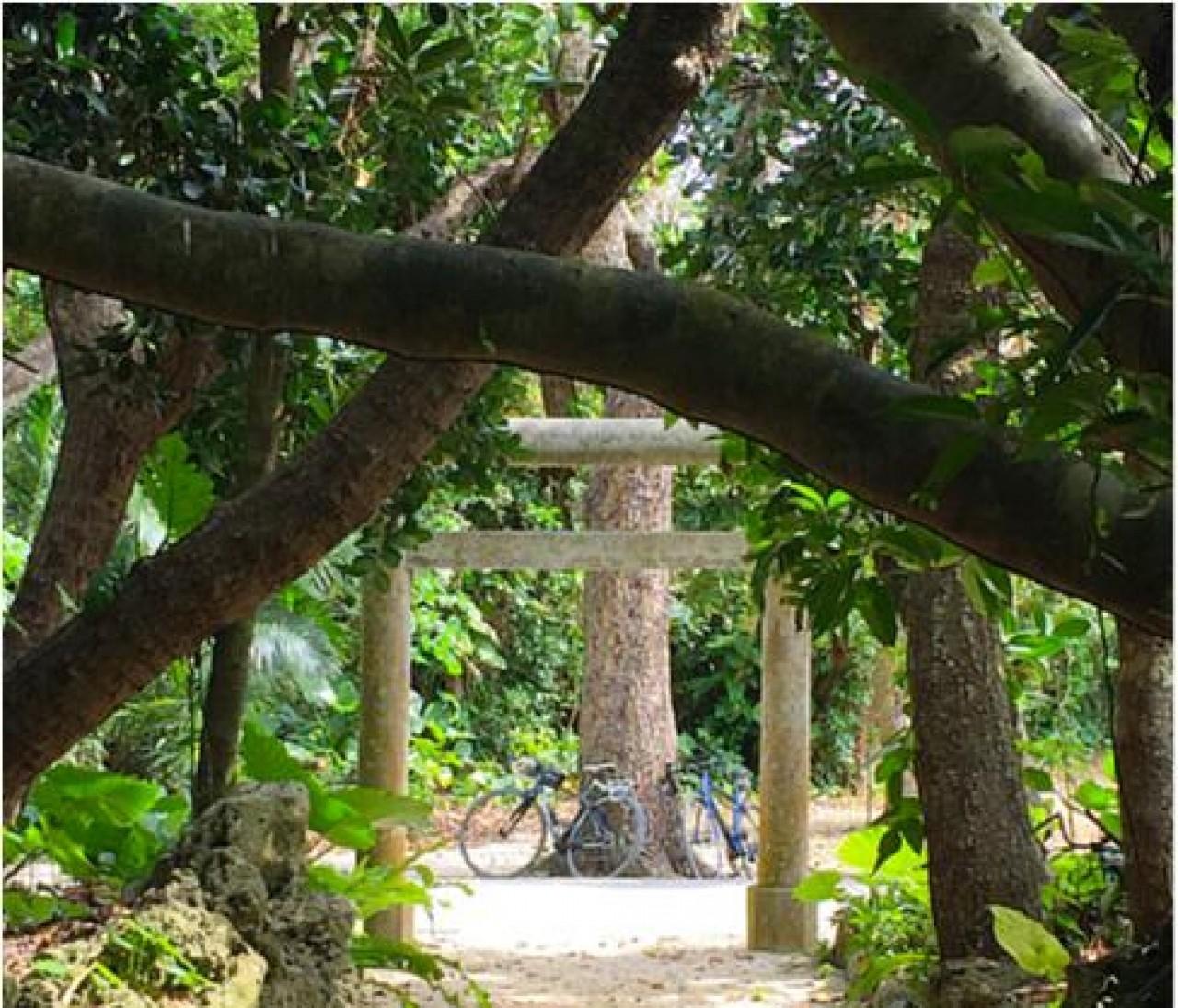 夏の旅行記 日本の島、そして台湾